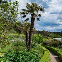 Auch das ist Schottland - Inverewe Garden