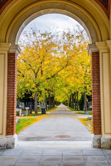 Zentralfriedhof_036.jpg