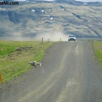 auf staubigen Straßen zum Ziel - #Island