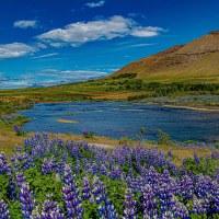 Am #Hvalfjörður – oder #Walfischbucht